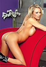 Briana Banks toys her ass with a toy...